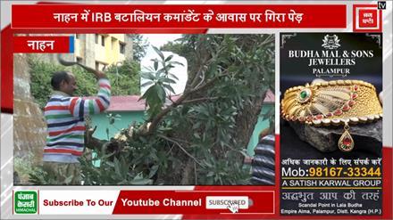 नाहन में IRB बटालियन कमांडेंट के आवास पर गिरा पेड़