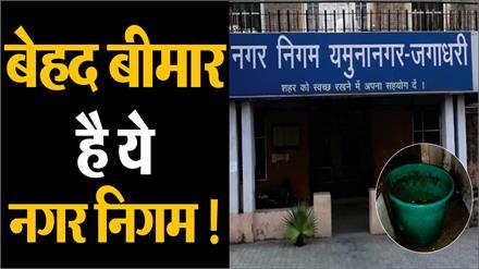 यमुनानगर नगर निगम की खुली पोल, हल्की बारिश में टपकता दिखा कार्यालय
