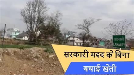 फसलों को आवारा पशुओं से बचाने के लिए इस Village ने पेश की मिसाल, सरकारी मदद के बिना बचाई Farming
