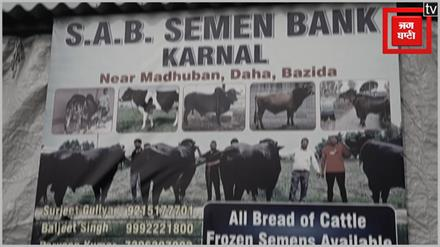 Haryana में 'भीम' की एंट्री, Sultan और Yuvraj को भी छोड़ा पीछे