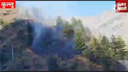 कुल्लू के बड़ाई के जंगलों में लगी भयंकर आग...