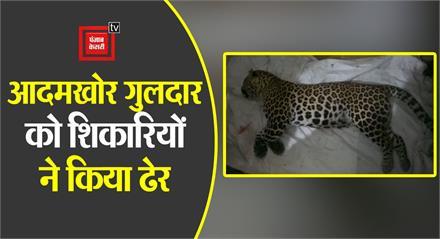 #Haridwar: वन विभाग ने  आदमखोर गुलदार को मारने के लिए लगाई  थी टीम, एनकांउटर में मारा गया गुलदार