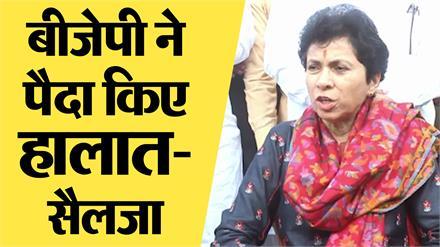 दिल्ली हिंसा पर बोली कांग्रेस प्रदेश अध्यक्ष कुमारी सैलजा, कहा- बीजेपी सरकार हुई फेल
