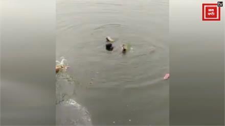 यहां दिखी एकता और भाईचारे की मिसाल, मुस्लिम महिला को बचाने कूदा हिन्दू भाई