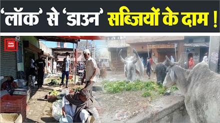 #Lockdown से टूटी किसानों की कमर, सब्जियों के दाम गिए...5 से 7 रुपए किलो पहुंचे रेट
