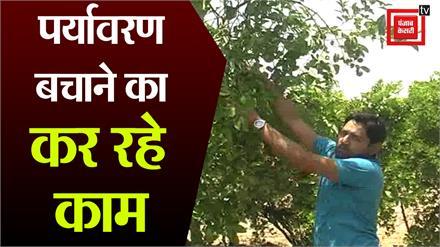 महेश राठौर हरियाली बचाने और पेड़ लगाने की दे रहे अद्भुत प्रेरणा, पिता के सपने को कर रहे साकार