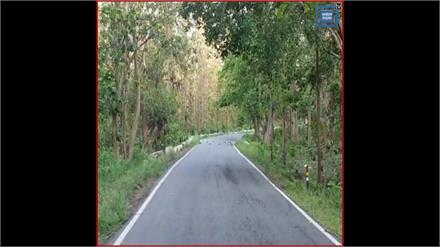 #Rajaji, Corbett Tiger Reserve: Uttarakhand में जान सकेंगे Elephants की संख्या, ड्रोन कैमरे से गणना