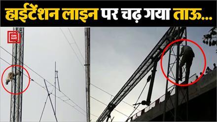 रेलवे स्टेशन से गुजर रही हाईटेंशन लाईन के पोल पर चढ़ गया बुजुर्ग, करीब डेढ घंटे तक चला ड्रामा