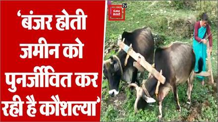 समाज को आइना देखा रही हैं कौशल्या देवी, बंजर होती जमीन को कर रही है पुनर्जीवित