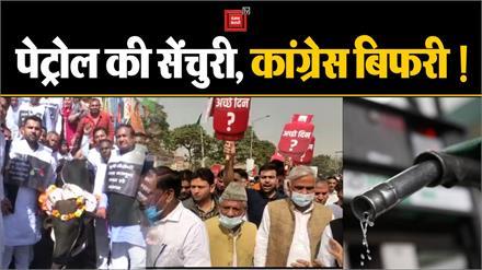 Congress को सड़कों पर ले आई Petrol की सेंचुरी, बैलगाड़ी चलाकर सरकार को घेरा
