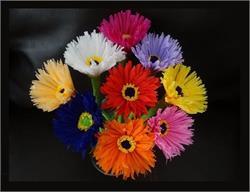 पेपर फ्लावर डैकोरेशनः यूं बनाएं कागज़ के फूल  (PICS)
