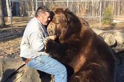 यहां इंसान पार्टनर के रूप में जानवरों से बनाते हैं संबंध!