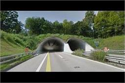 इंसानों की सुविधा नहीं, जानवरों की रक्षा के लिए बनाए गए हैं ये पुल