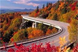 दुनिया की सबसे खूबसूरत सड़कें, हर मौसम में रहती हैं हरी-भरी