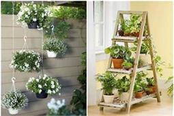 इस तरह करें Indoor Gardening, महक उठेगा घर