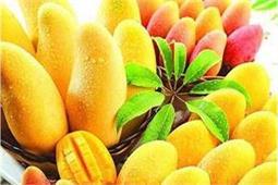 आम का फल खाने से मिलते हैं ये 8 फायदे