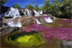 इंद्रधनुष की तरह लगती है दुनिया की यह सबसे खूबसूरत नदी