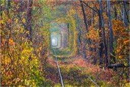 दुनिया की सबसे रोमांटिक जगह है 'Tunnel of Love', पार्टनर के साथ जाएं घूमने