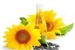 पिंपल्स हो या चोट के निशान, Safflower Oil लगाने से हर स्किन प्रॉब्लम होगी दूर