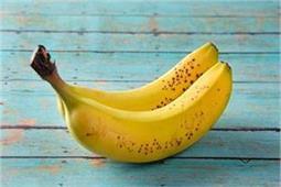 आपको जानकर हैरानी होगी, केला खाने से भी हो सकते हैं कई नुकसान