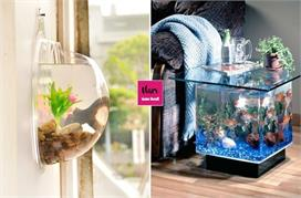 Amazing Aquarium decor ideas for home