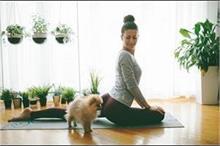 Yoga Day: घर पर कैसे बनाएं पीसफुल मेडिटेशन रूम?