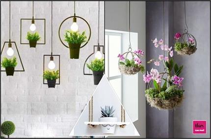 डैकोरेशन के साथ घर में पॉजिटिविटी लाएंगे Hanging Plant के ये आइडियाज
