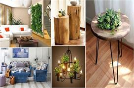 Natural Elements that can Transform your Home Decor