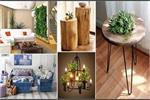 Natural Elements से दिखाएं अपनी क्रिएटिविटी, बजट में करें घर की सजावट