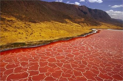 Mysterious tanzania lake can transform everything into stone