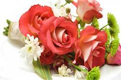 इन घरेलू तरीकों से करें फूलों की देखभाल (pics)