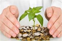 Feng Shui Tips: घर में लगाएं गुड़लक प्लांट, कभी नहीं होगी पैसों की किल्लत