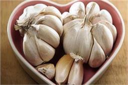 सर्दियों में जरूर खाएं लहसुन, कोल्ड-कफ के साथ ये 6 बीमारियों रहेंगी दूर