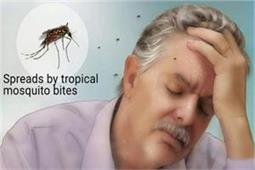 Health Update: डेंगू बुखार में कम न होने दें ब्लड सेल्स, बड़े काम आएंगे ये देसी नुस्खे
