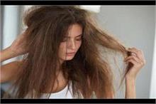 रूखे-बेजान बालों को सॉफ्ट बनाएंगे ये घरेलू टिप्स
