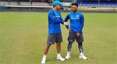 cricket news in hindi