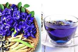 ग्रीन टी से कही फायदेमंद है नीली चाय, सेहत के साथ मिलेंगे कई ब्यूटी फायदे