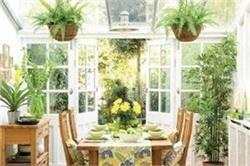गर्मियों में लगाएं ये पौधें, घर रहेगा तरोताजा
