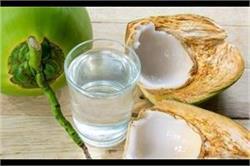 नारियल पानी के लाजवाब फायदे, 5 बड़ी बीमारियां रहेंगी दूर