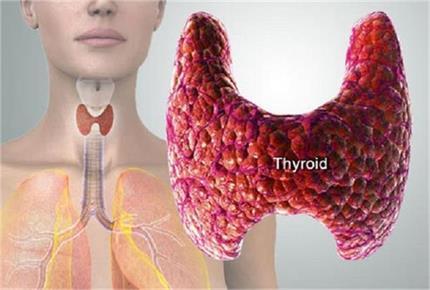 हाइपो-हायपर थायराइड के लक्षण और घरेलू उपचार
