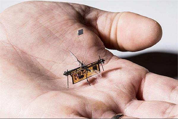बड़ी उपलब्धि : 3 भारतीयों समेत रिसर्चर्स ने तैयार किया मक्खी के आकार जितना वायरलैस ड्रोन