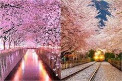 कोई फूलों तो कोई पेड़ों से है ढ़की, ये हैं दुनिया की 5 रंग-बिरंगी सुरंगे