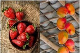 अगस्त से लेकर सितंबर महीने तक रोजाना जरूर खाएं ये फल