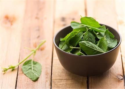 प्रैग्नेंसी में रोजाना खाएं 2-3 तुलसी के पत्ते, मिलेगें ये 5 फायदे