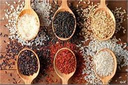 आपकी सेहत के लिए कौन सा चावल है बेस्ट... सफेद, काला, भूरा या लाल