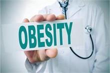World Obesity Day: 13 तरह के कैंसर का खतरा बढ़ाता है...