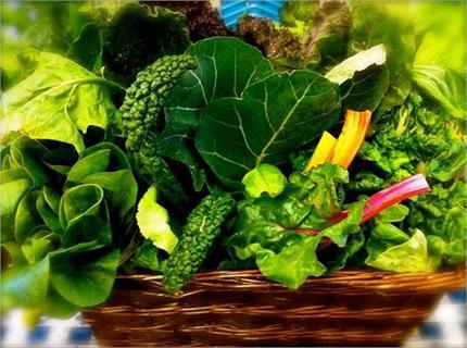 सर्दियों में खाएं 10 हरी सब्जियां, नहीं होगा जोड़ों में दर्द, मिलेंगे...