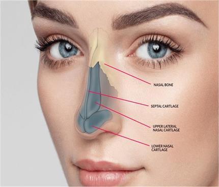नाक की सर्जरी करवाने से पहले जान लें ये जरुरी बातें
