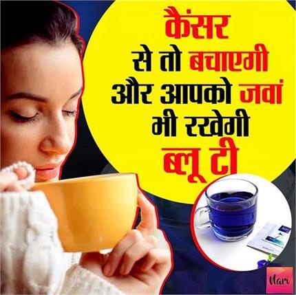 घर पर खुद ही बनाएं 'नीली चाय', वजन तो घटेगा ही कैंसर से भी रहेगा बचाव!
