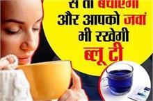घर पर खुद ही बनाएं 'नीली चाय', वजन तो घटेगा ही कैंसर से भी...